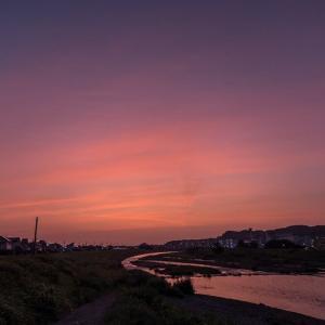 7月20日早朝散策-真っ赤な太陽+カワセミ