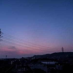 8月6日(木)コロナ対策+歩数稼ぎ=早朝の散策
