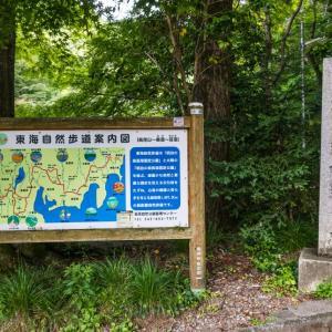 6月1日(火) 高尾山1号路-チラ見