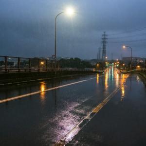 7月31日(土) 小雨の早朝散策-標準ズームだけ持って。
