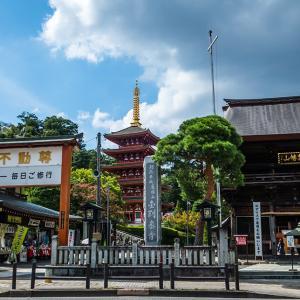 9月16日(木)高幡山-彼岸花は・・・・・