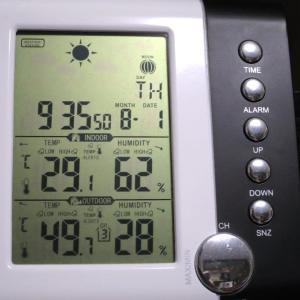 8月1日(木)今年最高気温だった!