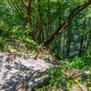 8月7日(水)白丸湖畔遊歩道と鳩ノ巣渓谷を歩く-03鳩ノ巣渓谷