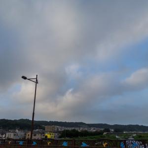 8月12日(月)曇り空を見上げながら、雑草を見つめ、高幡不動尊へ