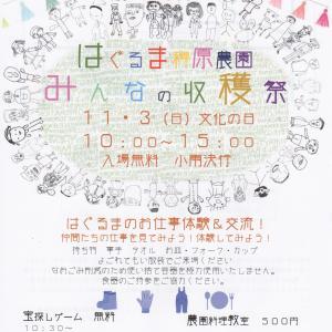 11月イベント出店のお知らせ
