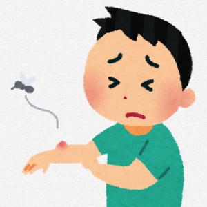 虫刺されのかゆみが消える方法【簡単】【市販薬不要】