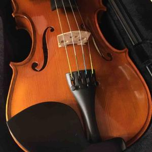 ヴァイオリン日記1 楽器が持てない