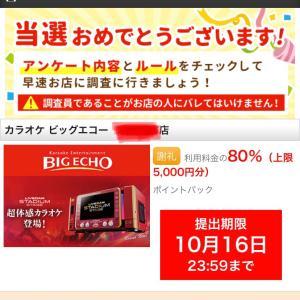 【先着】カラオケが80%還元で楽しめる♡予約完了(*´꒳`*)