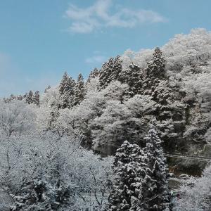 山田温泉 玄猿楼に行ってきたよ。