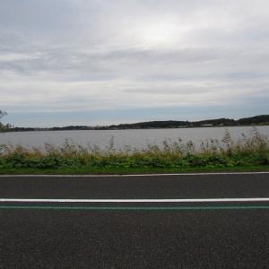 秋の手賀沼散歩