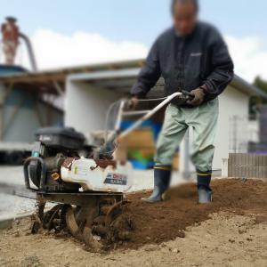 石だらけの庭を家庭菜園の畑にするのはマジ苦行