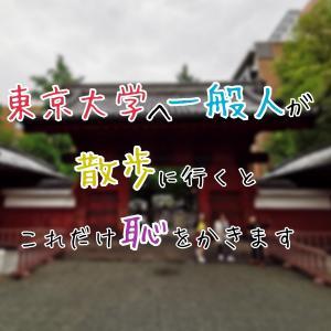 東京大学へ一般人が散歩に行くとこれだけ恥をかきます