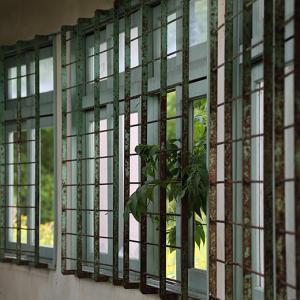 太陽小学校体育館の窓 2021