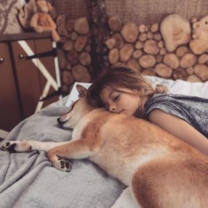 「イッヌと幼女、グランピング先で寝る😪」