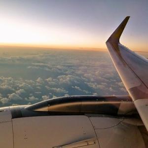 ブルネイから成田空港に到着 「ブルネイのお土産」