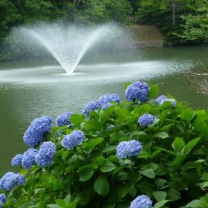 愛知県豊川市 「赤塚山公園」