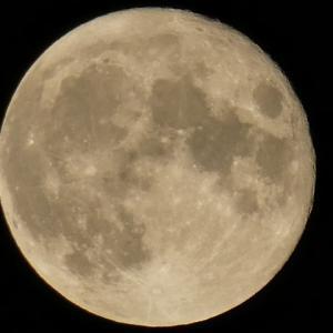 8月の満月 「スタージェンムーン (Sturgeon Moon)」