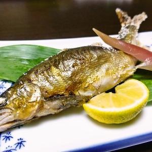 渥美半島 「魚と貝のうまいお宿 玉川」 夕食その2