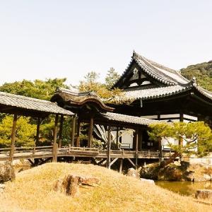 2月の京都寺社めぐり 「鷲峰山 高台寺 その2」