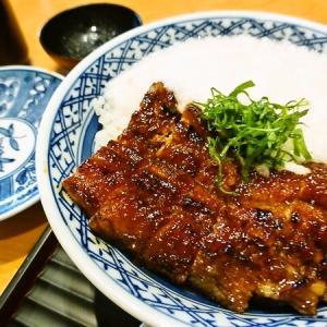 愛知県 三河一色鰻御三家春の食べ廻りキャンペーン 「うなぎの兼光」