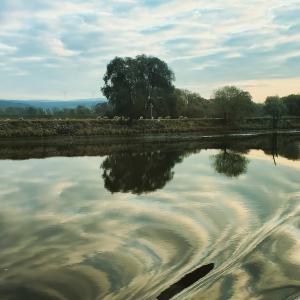 【Part4】秋のドナウ川クルーズ 10日間の旅【船と水門の話】