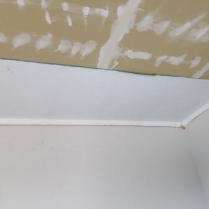 南の小部屋の天井おしまい