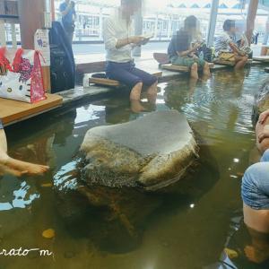 【鹿児島*夏旅行4】美山の朝マルシェと、マザルバカフェの絶景な上に絶品なハンバーガー。