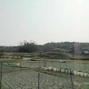 【伊勢神宮】おはらい町で買った竹のカゴと、cafe nokaとgallery yamahonのこと