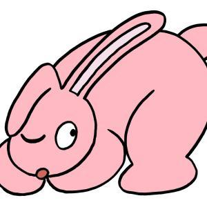 今日のイラスト75「ウサギのチラ見」