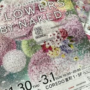 「FLOWERS BY NAKAED」へ行って来ました♪