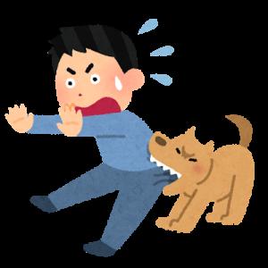 狂犬病のベトナムにおける予防の4つの対策【発症したら致死率100%】