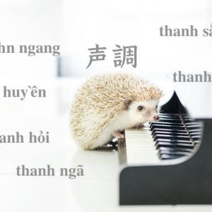 ベトナム語の6つの声調【音の高低で意味が変わる】