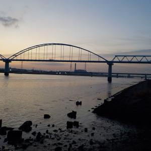 江戸川放水路で青イソ・フッコ船