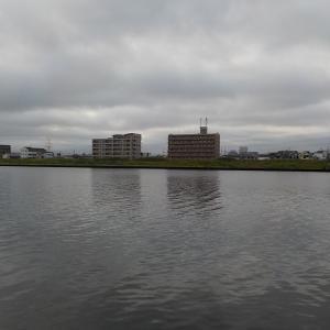 河口のぶっこみデイゲーム@旧江戸川