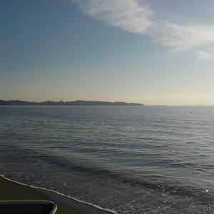 続·金田湾、浅場のマゴチ・ヒラメ