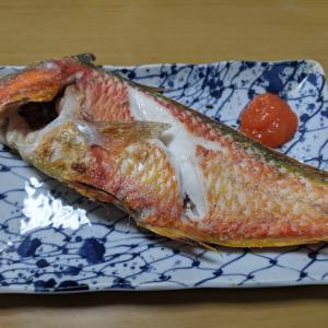 21日の釣果料理