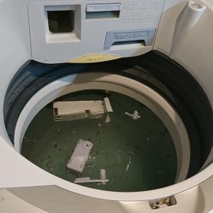 洗濯槽の裏側はカビだらけ!漂白してますか?