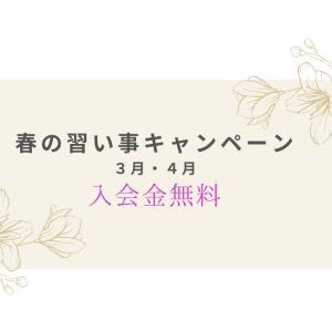春の習い事キャンペーン開催のお知らせ♪