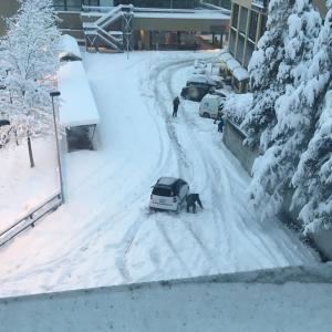 歴史的大雪カオス