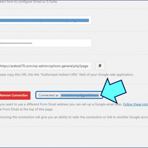 EMAIL DELIVERY ERROR: the plugin WP Mail SMTP v2.2.1