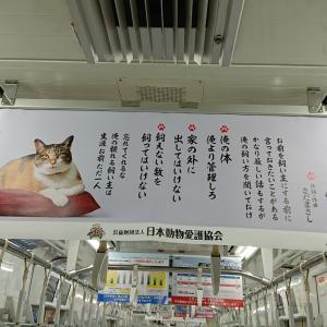 『車内中吊り広告』