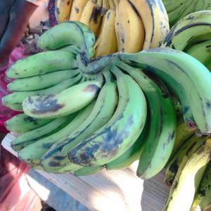 青いバナナを揚げたらどんなお味?