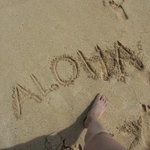 【ハワイに行ったら必ず行くべき】ホノルルだけじゃない!素敵なハワイの中でも私が1番好きなカイルア