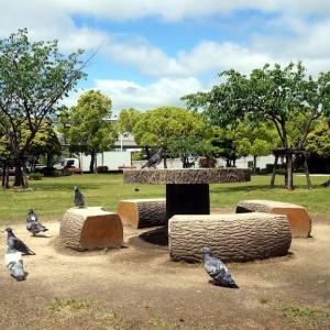 公園の定番といえば、やはり鳩・・しかも、撮影されることに慣れきった存在。