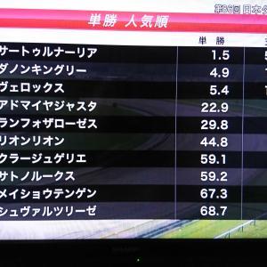 サラブレッドに魅せられて🏇日本ダービー 観戦😃