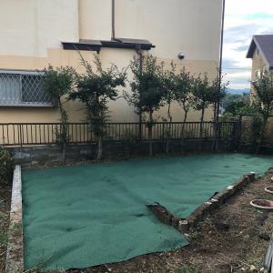 実家の庭の雑草対策3〜防草シートを敷いた半年後