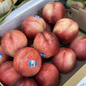 今日の果物 (2020/FEB/25) Today's Fruits