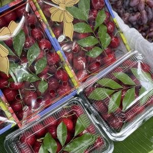 今日の果物 (2021/MAY/10) Today's Fruits