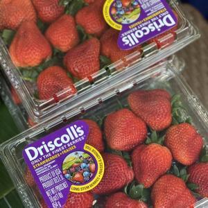 今日の果物 (2021/MAY/13) Today's Fruits