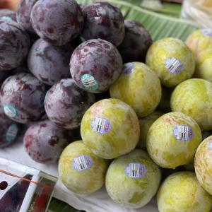 今日の果物 (2021/AUG/02) Today's Fruits